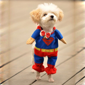 Free-shipping-Pet-font-b-Dog-b-font-Puppy-Cotton-Superman-Clothes-font-b-Halloween-b.jpg